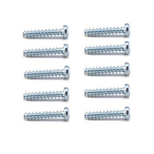 PSR Body Screws 12mm x10