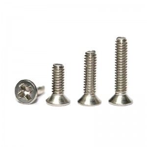 Sloting Plus Philips Head Screws M2x4mm