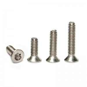 Sloting Plus Torx T6 Head Screws M2x4mm
