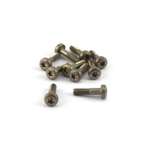 Thunder Slot Torx T6 Metric Screws 1.8x8mm